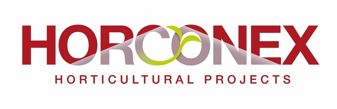 HORCONEX verlengt sponsorovereenkomst met vv Naaldwijk