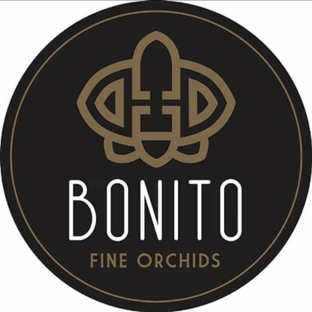 Sponsor in de spotlight; Bonito plant